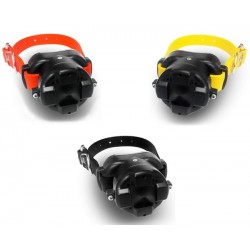 Beeper BB - Additional Collars