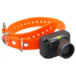 Dogtra 2600 T&B Additional Collar
