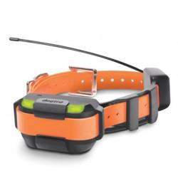 Pathfinder Collier GPS supplémentaire